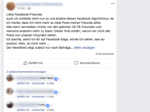 Screenshot vom Facebook-Algorithmus Hoax