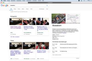 """Screenshot der SERP zum """"Keyword Bosseborn Urteil"""""""